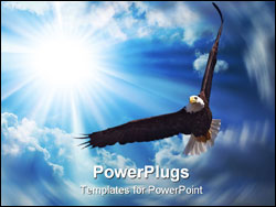 PowerPoint Template - American Bald Eagle in Flight; Blue Sky on Background