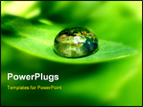 PowerPoint Template - earth map in water drop reflection on green leaf