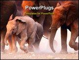 PowerPoint Template - Elephant herd on the run in Etosha desert