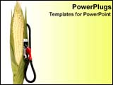 PowerPoint Template - Cornstalk with gas pump.