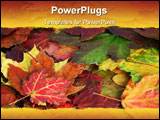 PowerPoint Template - beautiful reflection of fall leaves in a pond