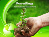 PowerPoint Template - farmer hand holding a fresh young plant symbol of new life and environmental conservation