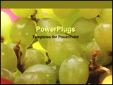 PowerPoint Template - fresh grapes