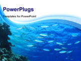 PowerPoint Template - Fish on blue water background