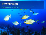 PowerPoint Template - School of Fish: Trevallies in the Red Sea