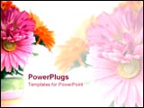 PowerPoint Template - Pot of summery flowers.