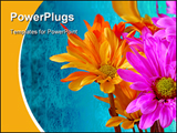 PowerPoint Template - Vibrant flowers
