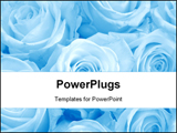 PowerPoint Template - Blue roses