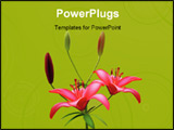 PowerPoint Template - Red lily isolated on green background