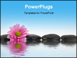 PowerPoint Template - An image of black stones with reflections in water