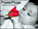 PowerPoint Template - Little baby girl with pink flower