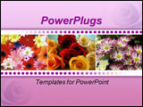 PowerPoint Template - a group of colorful roses lying on their sides