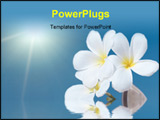 PowerPoint Template - Tropical flower Plumeria alba and seashell in the sea