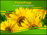 PowerPoint Template - many yellow sunflowers with green leaf closeup