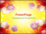PowerPoint Template - Background collage with a colorful flowers around