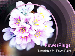 PowerPoint Template - Bouquet of wild little flowers
