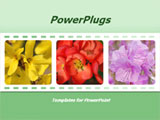 PowerPoint Template - errific floral template for presentations on flowers, floristry, flower care, floral design, flower
