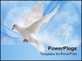 PowerPoint Template - flying white dove isolated on black background