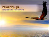 PowerPoint Template - Eagle flying over ocean at sunset.