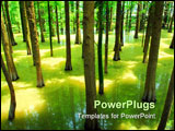 PowerPoint Template - Spring landscape of forest and water