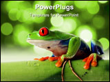 PowerPoint Template - Red-Eyed Tree Frog on bamboo. Isolated on white background.
