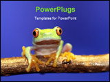 PowerPoint Template - Image of a red eyed tree frog-agalychnis callidryas -slight blurriness, best at smaller sizes