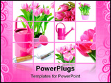 PowerPoint Template - tulip flowers and watering can. Isolated over white background