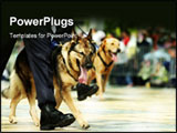PowerPoint Template - German Shepherd in marching.