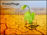 PowerPoint Template - green plant on background of cracked soil