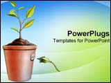 PowerPoint Template - Plant imitating energy source with plug hooked into pot.