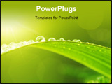 PowerPoint Template - Close up of Green leaf with dews in morning