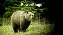 PowerPoint Template - Grizzly bear in a clearing in Jasper National Park Alberta