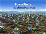 PowerPoint Template - a large field of growing light bulbs