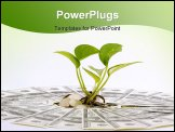 PowerPoint Template - little plant on the heap of dollars