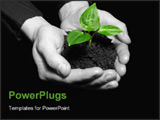 PowerPoint Template - Hands holding sapling in soil on black