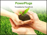PowerPoint Template - holding a plant between hands on grass