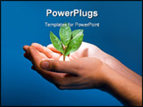 PowerPoint Template - Photo of hands of the man with a young green plant