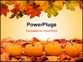 PowerPoint Template - Fall coloured leaves with a pumpkin isolated on a white background Fall Leaves