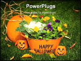 PowerPoint Template - happy halloween flower basket and pumpkin on grass with leaves