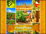 PowerPoint Template - Harvest concept collage with a gardener working on the field