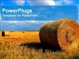 PowerPoint Template - Harvesting