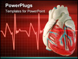 PowerPoint Template - this is a medical (anatomically correct) model of the human heart,
