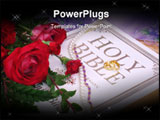 PowerPoint Template - Roses With Wedding Rings necklace and Bible