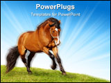 PowerPoint Template - beautiful stallion galloping on a green grass