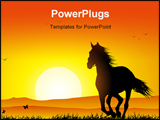 PowerPoint Template - a wild horse running at sunset in a meadow