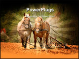PowerPoint Template - Nostalgic cultivation with two magnificent horses in Germany
