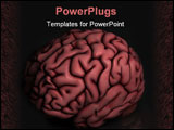 PowerPoint Template - Human brain oblique image with reflection on black surface and background