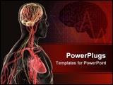 PowerPoint Template - 3d rendered anatomy illustration of a human body shape with heart and brain