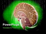 PowerPoint Template - Digital illustration of brain in colour background
