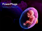 PowerPoint Template - 3d rendered illustration of a human fetus